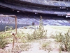 abandoned19-weeds-in-foul-territory-down-the-right-field-line