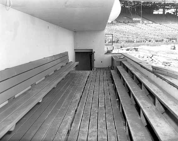 Twins dugout at the Met